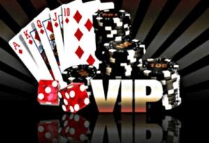 VIP Programmes