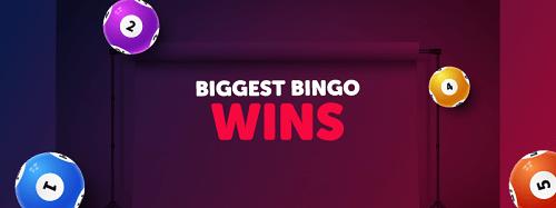 Big Bingo Win Ever